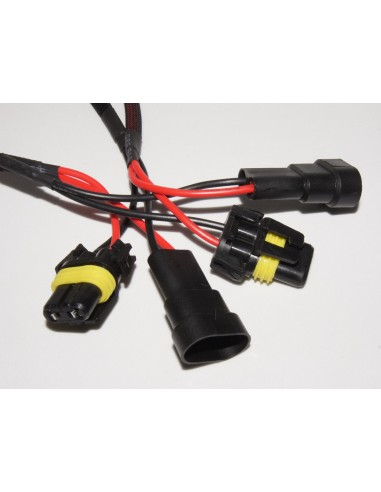 Kit Canbus HB3 50W con conectores